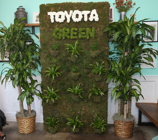 Toyota Presented Green Is The New Black at Afropunk 2018