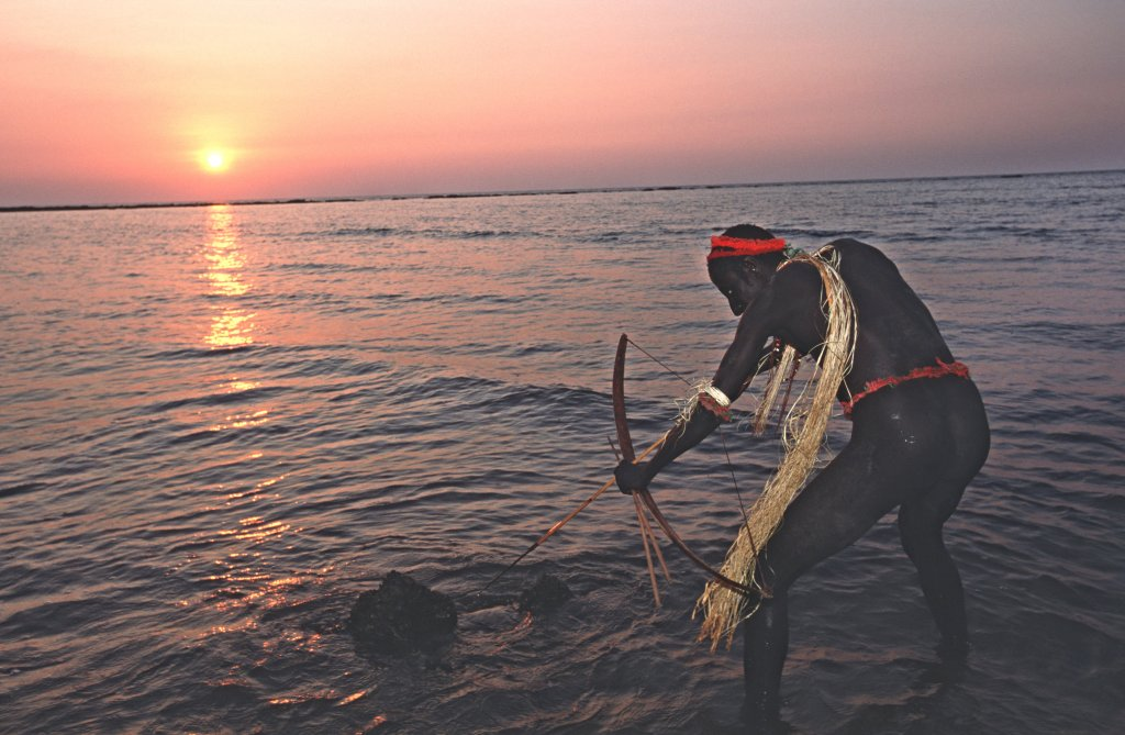 The twilight of the Andaman Jarawa