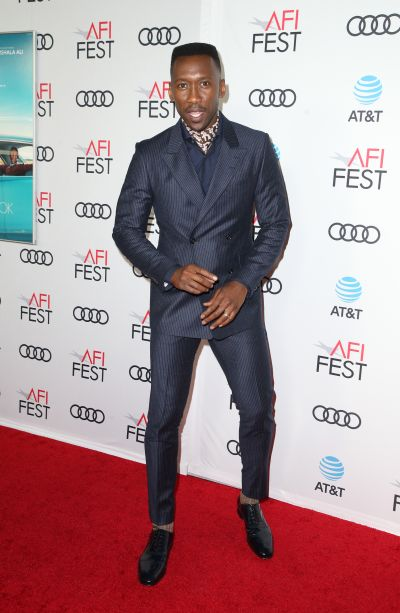 AFI Fest 2018 Presented by Audi - Gala Screening of 'Green Book' - Arrivals
