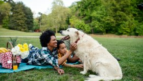 Young loving family having fun in the park