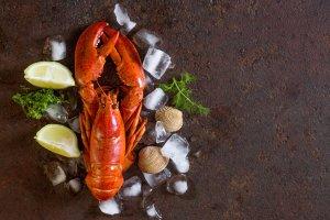 Lobster Still Life