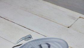 Dior x Air Jordan 1 collaboration