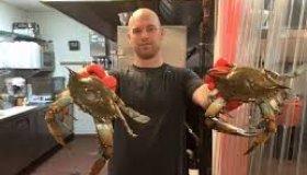 Vince Meyer Vince's Crab House