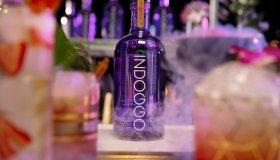 Snoop Dogg x INDOGGO Gin