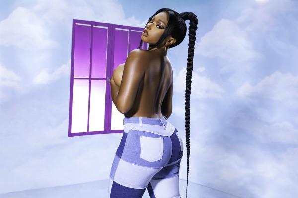 Megan Thee Stallion X Fashion Nova