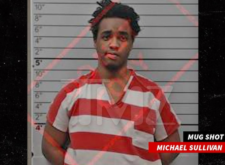 Michael Sullivan mugshot